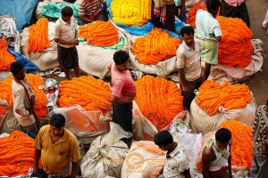 Photo Essay – Mallick Ghat Flower Market in Kolkata